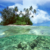 Travel To Solomon Islands