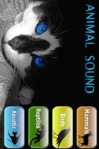 Animal Sound - screenshot