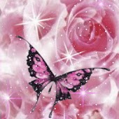 Pink Butterfly In Bright Roses