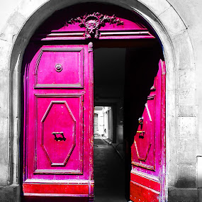 Porte de la vie by Alexandra Rafaila - Buildings & Architecture Architectural Detail ( metal, black and white, door, france, pink, city, , colorful, mood factory, vibrant, happiness, January, moods, emotions, inspiration )