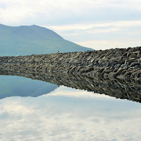 Reflections by Luis Domar - Landscapes Waterscapes ( #mirror, #reflections, #water, #ldomarfotography, #king cove )