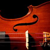 Pro Cello - Cello Tuner