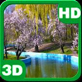 Spring Park Sakura Blossoms HD