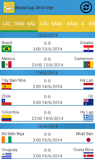 World Cup 2014 Việt