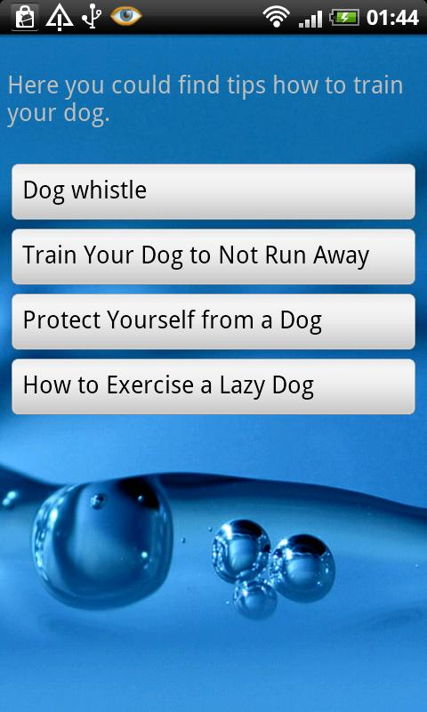 How To Train Your Dog With A Dog Whistle