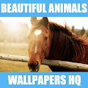 Top Animal Wallpapers HQ icon