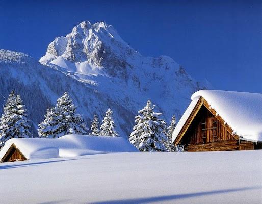 Winter Wallpaper - screenshot