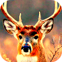 deer hunting 2014 reloaded icon