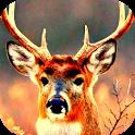 deer hunting 2014 reloaded icon