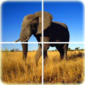 Game Animal Puzzle apk for kindle fire