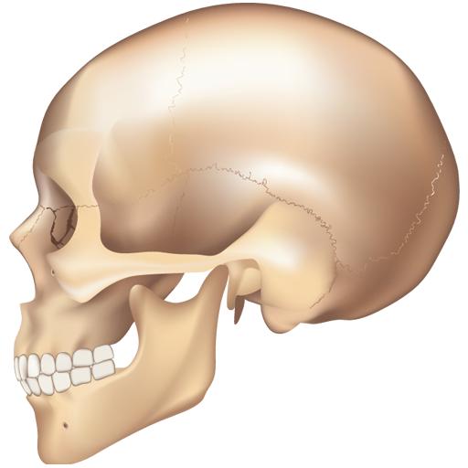e画像解剖 醫療 LOGO-阿達玩APP