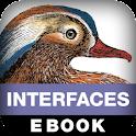 Designing Interfaces, 2E logo