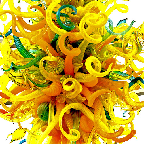 Chihuly - Chandelier Detail by Jane Spencer - Artistic Objects Glass ( detail, chandelier, chihuly, pittsburgh, pa, phipps conservatory, glass, us, blown,  )