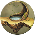 Fantasy Swamp icon