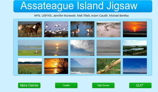 Assateague Island Jigsaw