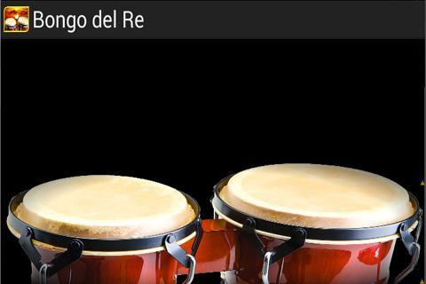 King of the bongo