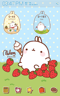 [Sale] Molang Ani D-day Widget