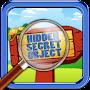 Hidden Secret Objects