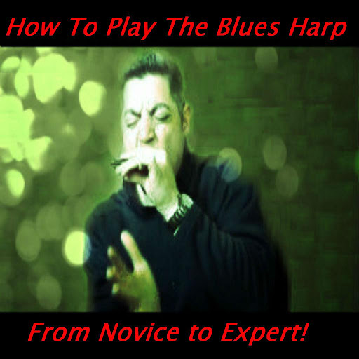 How To Play The Blues Harp+Pro
