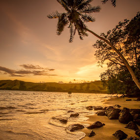 Viani Sunset by Jason Rose - Landscapes Sunsets & Sunrises ( viani bay, palm tree, sunset, beach, fiji )