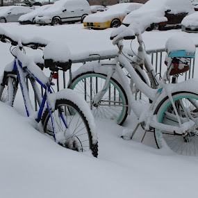 No Cycling Alert by Arifah Mardiningrum - Transportation Bicycles ( cycle, parking lot, bike, snow, frozen )