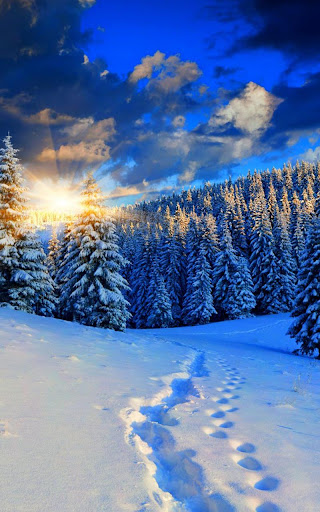Citaten Winter Apk : Download winter live wallpaper for pc