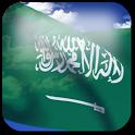 3D Saudi Arabia Flag icon