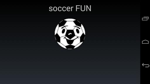 soccer FUN WM 2014