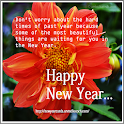 True Pic New Year Cards
