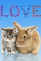 Screenshot of Cat and Bunny. Cute Wallpaper.