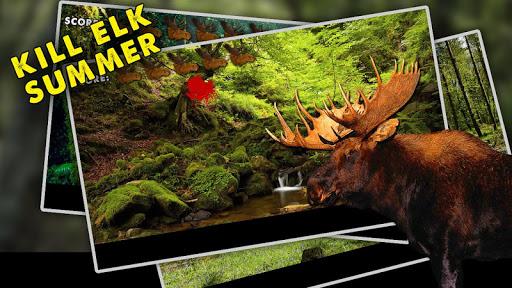 Kill Elk Summer