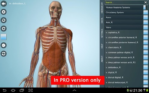 Anatomy 3D - Anatronica- screenshot thumbnail