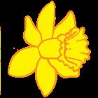 Paridonapp icon