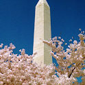 Washington, DC: A to Z