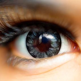 eyes.. by Dodi Yoga - People Body Parts ( deemozart )