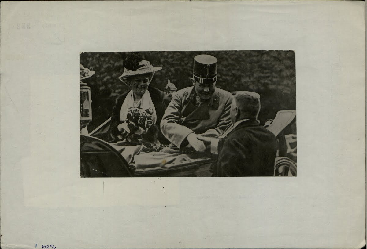 archduke franz ferdinand assasination On june 28th, 1914, franz ferdinand, the heir to the austro-hungarian throne, was assassinated by gavrilo princip, a nationalist working for the serbian underground organisation black hand.