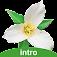 Washington Wildflowers Intro