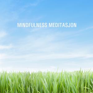 Mindfulness Meditasjon for Android