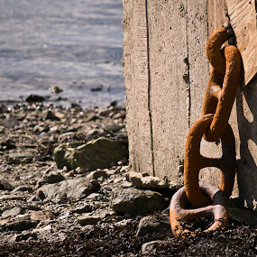 Rusty Chain by Kelly Goode - Artistic Objects Other Objects (  )