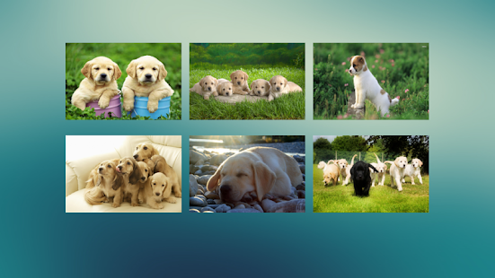 Jigsaw Puzzle Dogs Screenshot 1