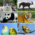Animal sounds and ringtones icon