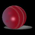 Hindi Cricket News icon