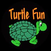 Turtle Fun