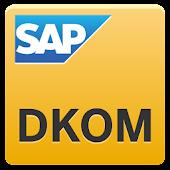 SAP DKOM 2013 Sofia