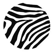 Zebra - Beta