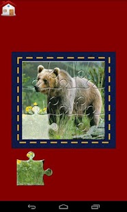 Animal Jigsaw Puzzles and Quiz