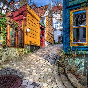 Picturesque Cobblestone street  by Morten Golimo - City,  Street & Park  Street Scenes ( bergen, picturesque, cobblestone street, morten golimo, norway )