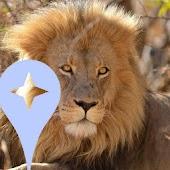Kruger Park Local Guides
