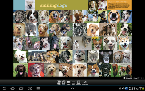 The Bark: dog culture magazine- screenshot thumbnail