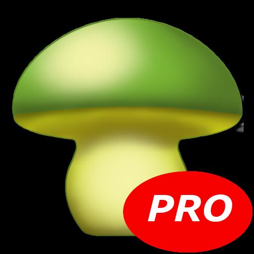 MushtoolPro - Mushroom LOGO-APP點子